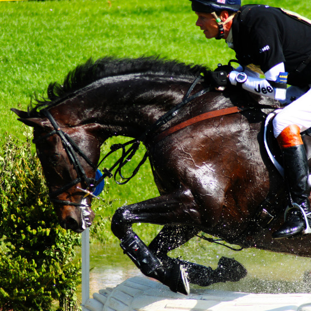 """William Fox-Pitt Jumping the Water"" stock image"