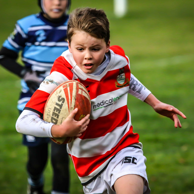 """Young Rugby Player"" stock image"