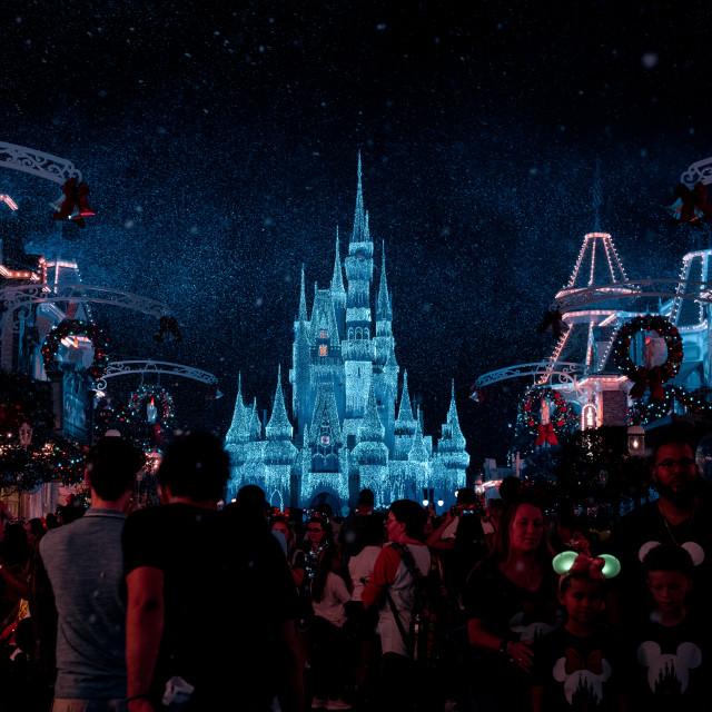 """Magic Kingdom"" stock image"
