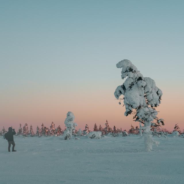 """Lapland nature's"" stock image"