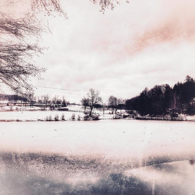 """Winter of Despair"" stock image"