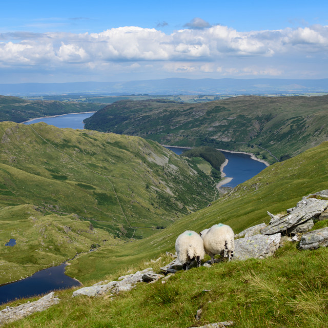 """Haweswater from Harter fell"" stock image"