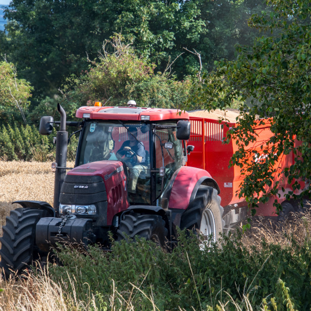 """""""Tractor in Field"""" stock image"""