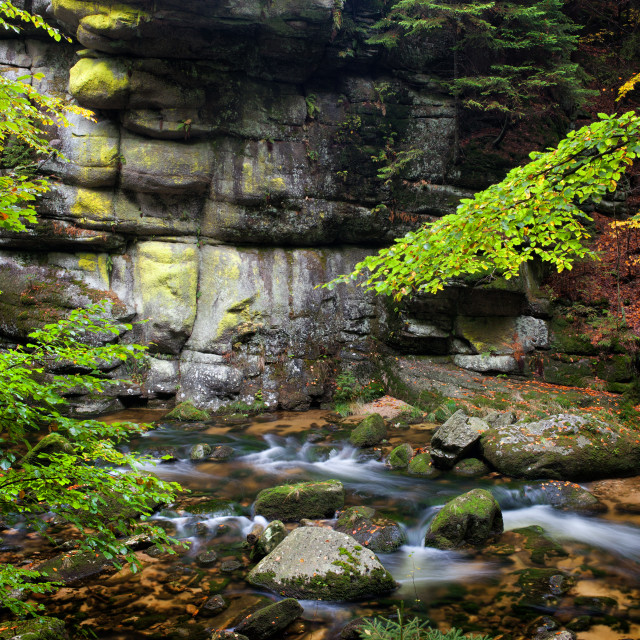 """""""Stream and Cliff in Mountain Forest"""" stock image"""