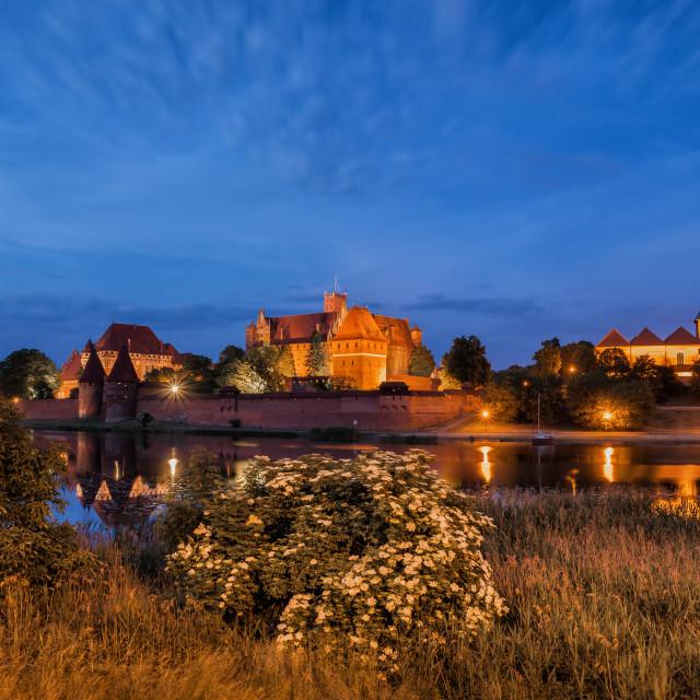 """Malbork Castle at Night in Poland"" stock image"
