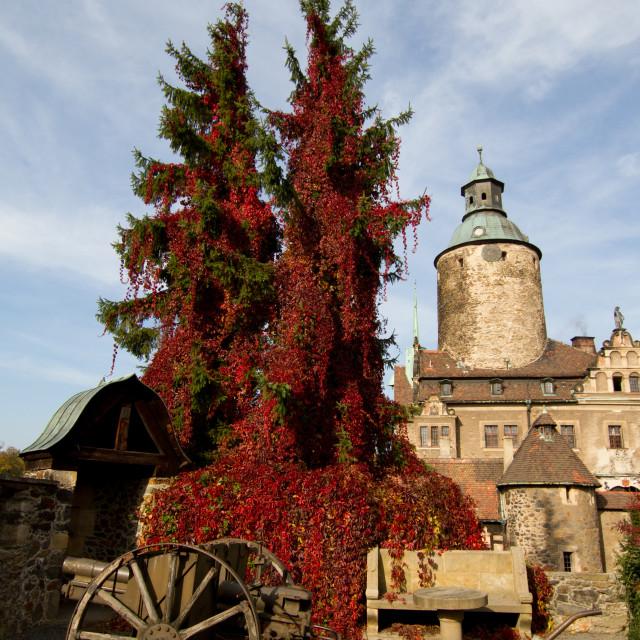 """Czocha Castle, Lower Silesia, Poland"" stock image"