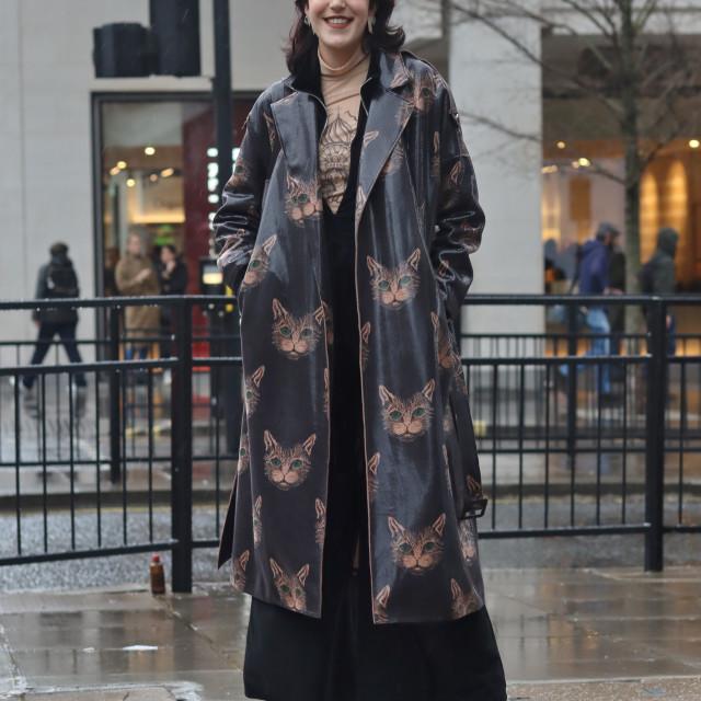 """Pussy-coat."" stock image"