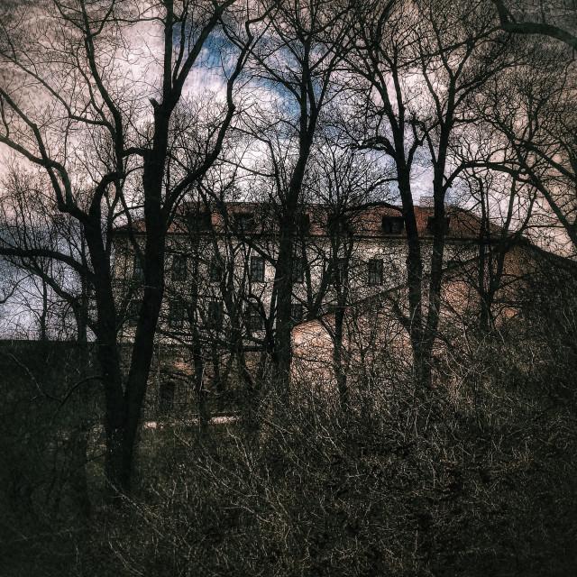 """""""Brno Castle in Winter"""" stock image"""