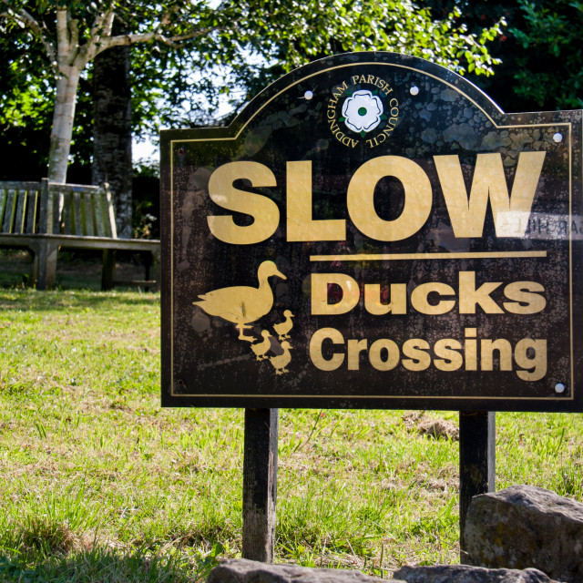 """Sign, Slow Ducks Crossing"" stock image"