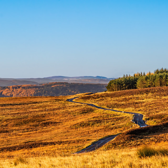 """Cairngorms countryside"" stock image"