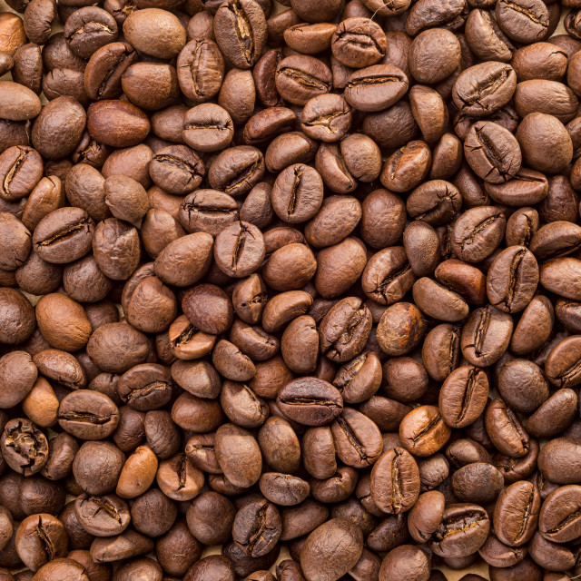 """Beans of Coffee"" stock image"