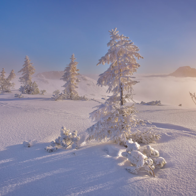 """Sunrise at the frozen morning in the tatra mountain."" stock image"