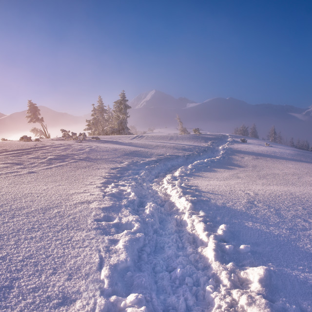 """Winter mountain landscape with fotpath in the snowy morning"" stock image"