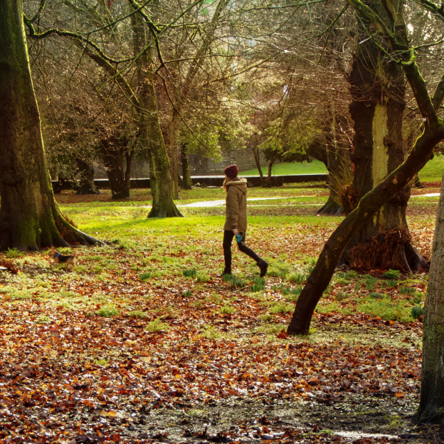 """Bute Park, Cardiff"" stock image"