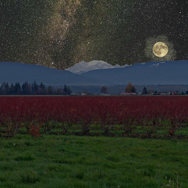 """""""Starry Winter Baker"""" stock image"""