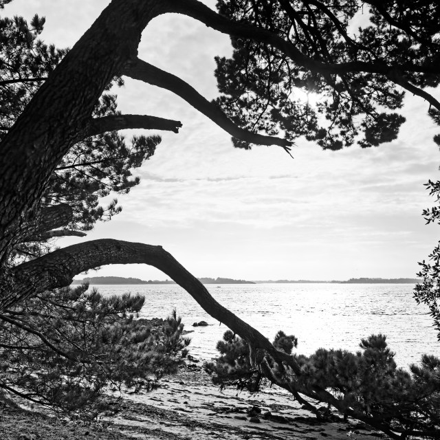 """Berder island"" stock image"