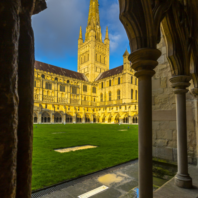 """""""Norwich Cathedral from the cloister with vaulted ceiling, Norwich, Norfolk,..."""" stock image"""