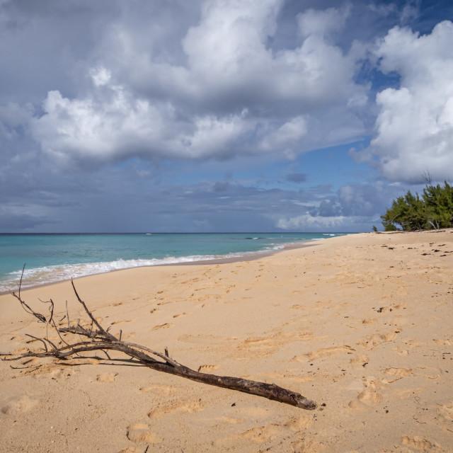 """Governor's Beach"" stock image"