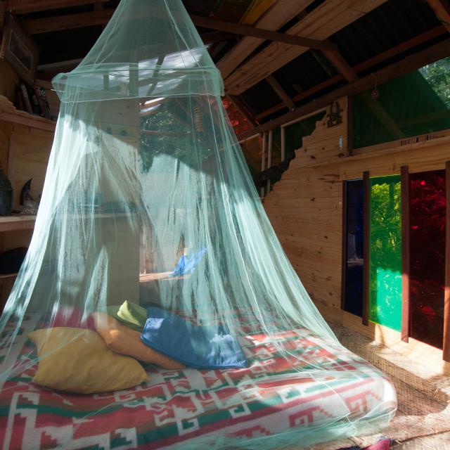 """Mosquito net"" stock image"