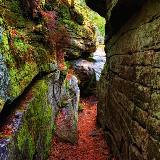 """Denecourt 11 hiking path"" stock image"
