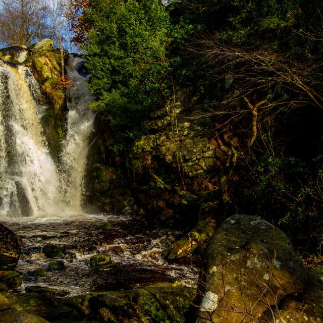 """""""Posforth Gill Falls, Bolton Abbey Estate"""" stock image"""