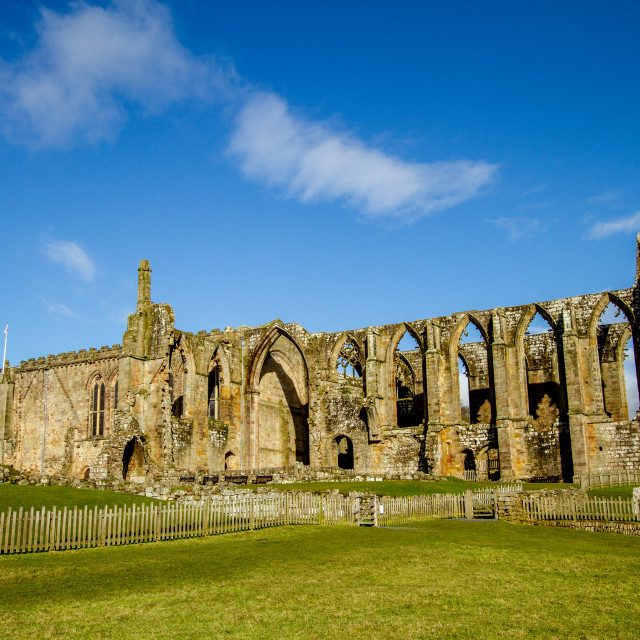 """""""Bolton Priory, the ruins"""" stock image"""