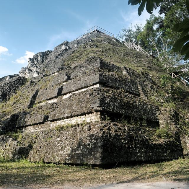"""Mayan pyramid in Tikal"" stock image"