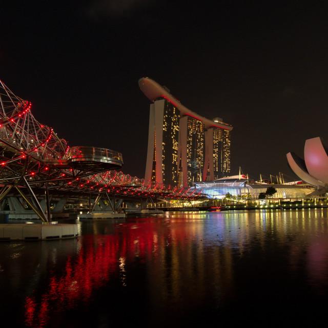 """""""Singapore by Night"""" stock image"""