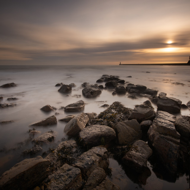 """""""Tynemouth Early Morning"""" stock image"""