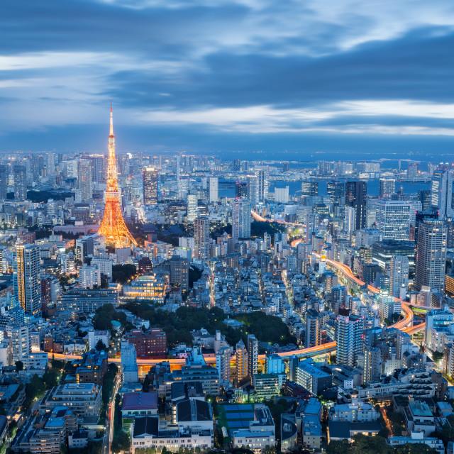 """Cityscape at Dusk, Tokyo, Japan"" stock image"