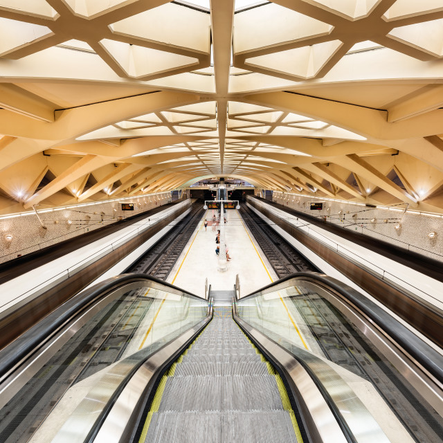 """""""Trains and people at Alameda station, Valencia, Spain"""" stock image"""