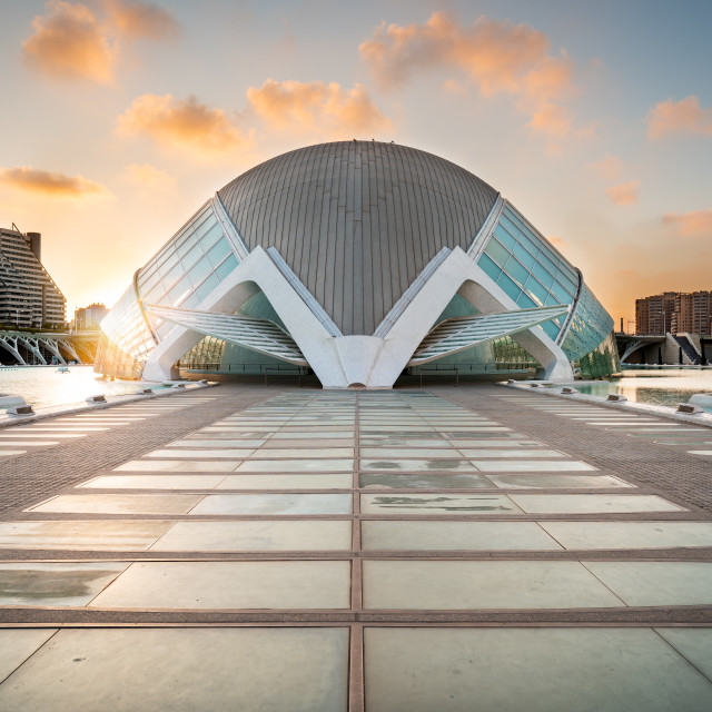 """""""The city of the Arts and Sciences taken at sunset"""" stock image"""