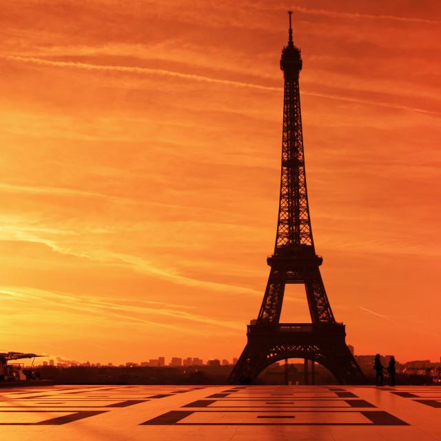 """""""La parisienne"""" stock image"""