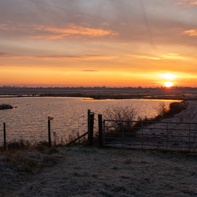 """""""Sunrise over Wetland Lake"""" stock image"""