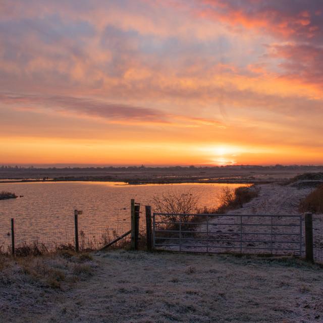 """""""Marshside Sunrise"""" stock image"""