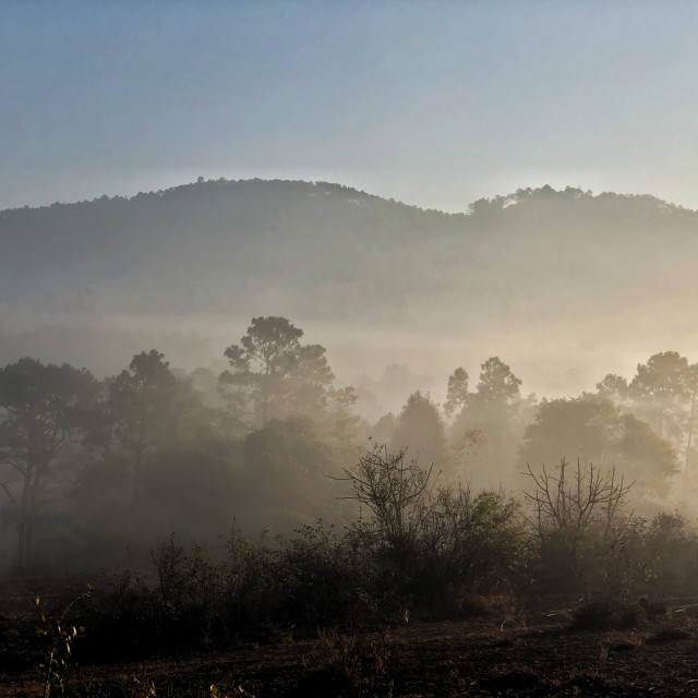 """""""Early morning in Myanmar mountains"""" stock image"""