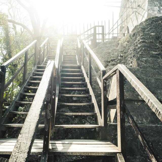 """Stairs at Tikal"" stock image"