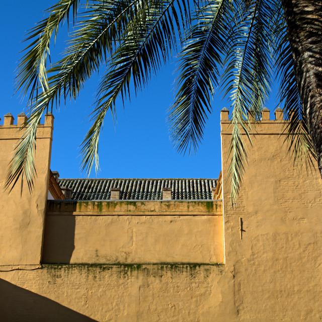"""Seville's Alcazar"" stock image"