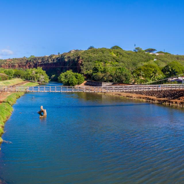 """Aerial view of the wooden swinging bridge at Hanapepe on Hawaiian island of..."" stock image"