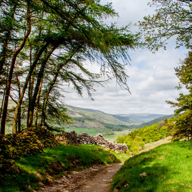"""""""Dales Way Walk from Grassington looking north towards Kettlewell"""" stock image"""