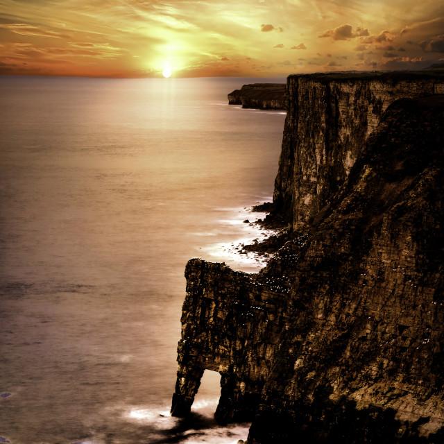 """Bempton Cliffs, North Yorkshire Coast"" stock image"