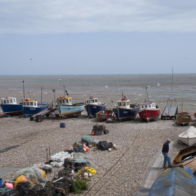 """Beer Beach, Devon"" stock image"