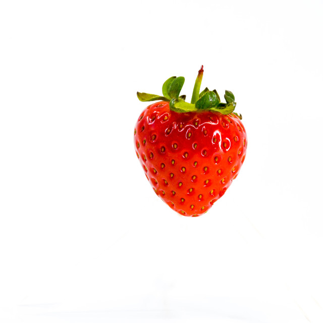 """Close up of a single strawberry against a plain white background."" stock image"