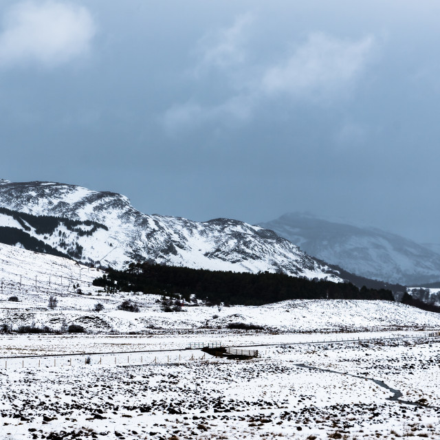 """Snow in the Cairngorms"" stock image"