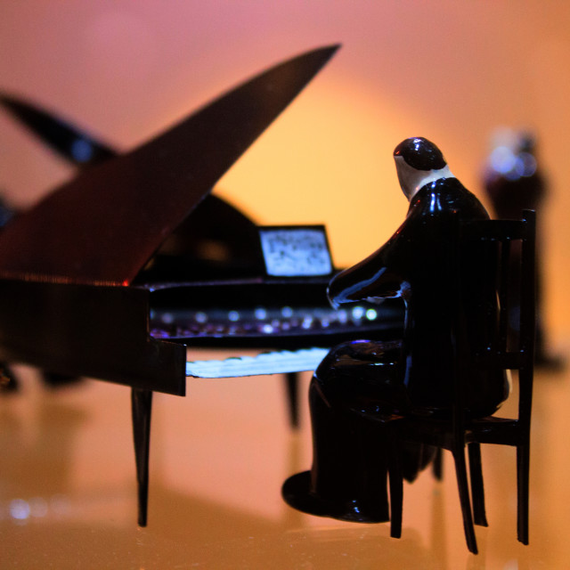 """""""The Pianist"""" stock image"""