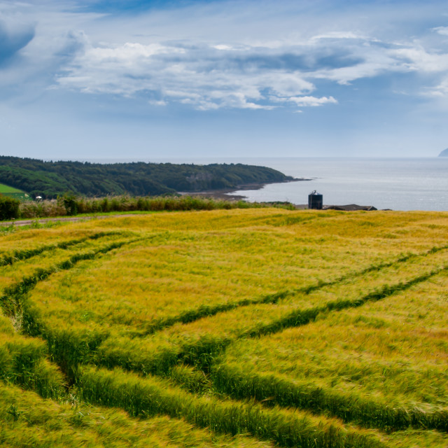 """View to Ailsa Craig through the green fields"" stock image"