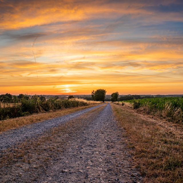 """Pathway to golden sunrise"" stock image"