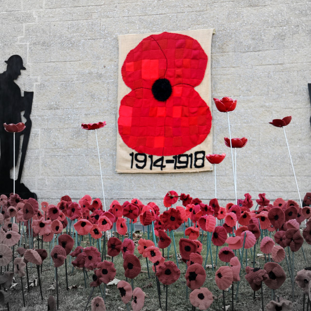 """Remembrance display in Great Ayton, North Yorkshire."" stock image"