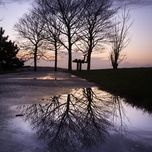 """Dusk at Ravenhill park"" stock image"