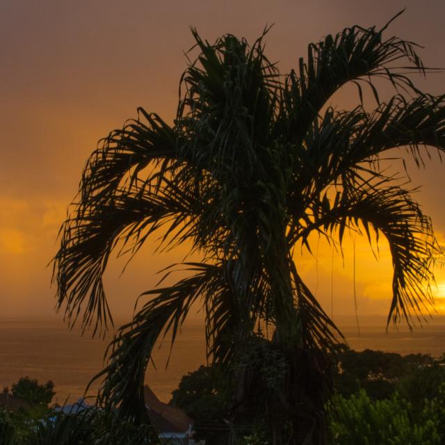 """Storm view - Tobago"" stock image"